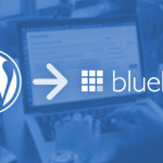 Bluehost Hosting With Wordpress