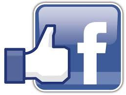 Important Facebook Statistics 2014