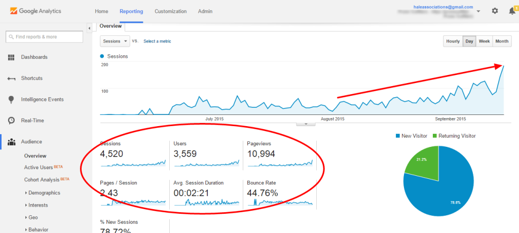 SEO Results Show Organic Traffic Growth